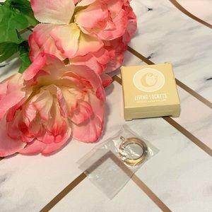 Origami Owl Medium Rose Gold Hinged Locked